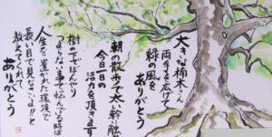 19 笹島 由紀子 植物